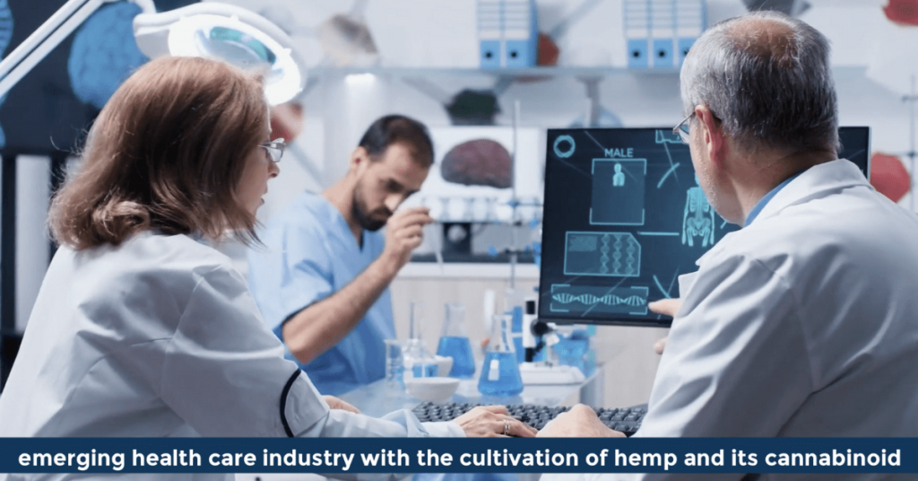 Pat VC - the emerging health care industry with the cultivation of hemp and its cannabinoid called CBD